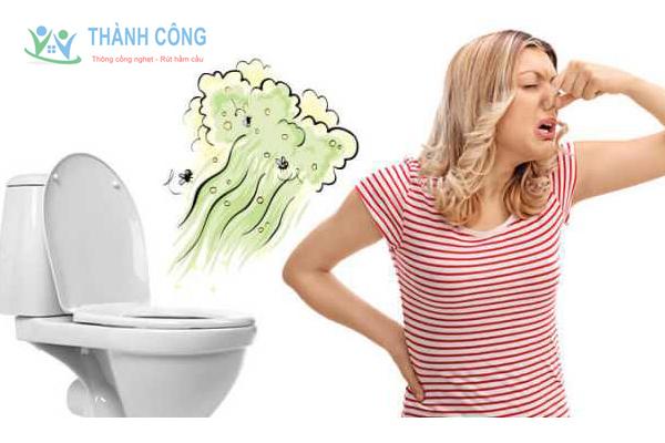 Bồn cầu hay bị bốc mùi hôi khó chịu