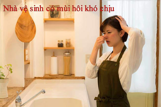 Nhà vệ sinh có mùi hôi khó chịu